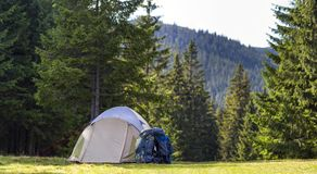 Tourist camp on green meadow with fresh grass in Carpathian mountains forest. Hikers tent and backpacks at camping site. Active li Royalty Free Stock Photo