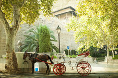 Tourist chariot in Palma de Mallorca Royalty Free Stock Image