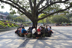 Tourist in chongqing municipal auditorium Royalty Free Stock Photography