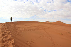 Tourist climbing a dune in the Sossusvlei desert, Namibia Royalty Free Stock Photography