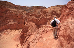 Tourist in the Colored Canyon. Stock Images
