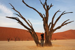 Tourist in Dead valley. Dead valley in Namibia Stock Image