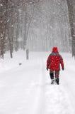 Tourist, der alleine in Winterwald geht Stockbild