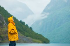 Tourist, der Berge und Fjord Norwegen, Skandinavien betrachtet stockbild