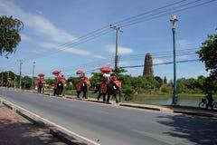 Tourist, der den Elefanten in Ayuttaya-Provinz reitet lizenzfreies stockbild