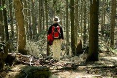 Tourist, der im Wald steht Lizenzfreie Stockfotografie