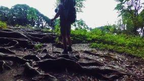 Tourist in der Wanderung stock footage