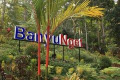 Banyu Nget, Trenggalek, East Java, Indonesia. Tourist destination in Trenggalek, East Java, Indonesia.  Banyu Nget or `warm water` is a managed semi-natural stock photos
