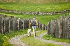 Tourist with dog in countryside Stock Image
