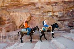 Tourist on donkey Royalty Free Stock Photography