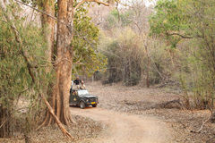 Tourist eagerly waiting for tiger sighting in Pench Tiger reserve. SEONI, INDIA-JUNE 26: Tourist moving in Safari jeep during game drive in Pench Tiger Reserve stock photos