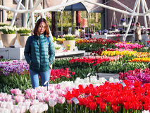 Tourist enjoy beautiful tulip garden in Keukenhof 2016, Amsterdam, Netherlands stock images