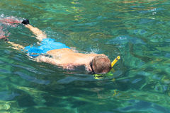Tourist enjoy with snorkeling in a tropical sea at Phi Phi islan Stock Photo