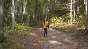 Tourist enjoys forest while leaves falling stock video footage