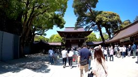 Tourist are entering the Meiji Shrine. stock video footage