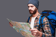 Tourist examining map. Handsome young bearded man carrying backpack and examining map while standing against grey background Stock Image
