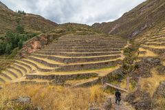 Tourist exploring the Inca Trails and the majestic terraces of Pisac, Sacred Valley, major travel destination in Cusco region, Per Stock Images