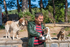 Tourist Feeding food for cats in Ephesus Turkey Royalty Free Stock Images
