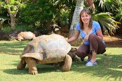 Tourist feeding giant turtle Stock Photos