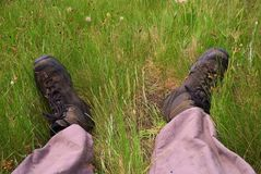 Tourist feet in a grass Stock Images