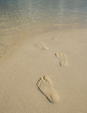 Tourist foot print on beach Stock Image