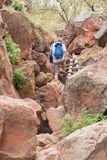 Tourist on the footpath leading to the Waterberg Plateau Stock Photography
