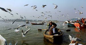 Tourist on the Ganga river at Benaras. Royalty Free Stock Photos