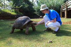 Tourist with giant turtle. In Mauritius Stock Images