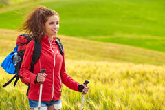 Tourist girl view of green wheat hills. Stock Photos