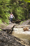 Tourist girl walking through the mountain forest stock image