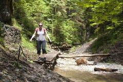 Tourist Girl Walking Through The Mountain Forest Royalty Free Stock Photos