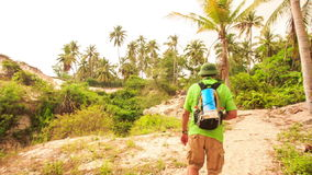 Tourist Goes along Path among Palms in Fairy-Stream Park. Backside tourist with backpack walks along narrow path among palms in Fairy-Stream park in Vietnam stock video footage