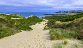 Sandfly Beach near Dunedin, New Zealand. Tourist hike at the Sandfly Beach near Dunedin, New Zealand royalty free stock photography