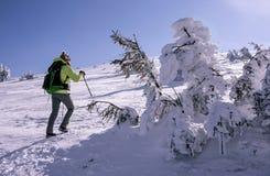 Tourist hiking on winter mountain stock photography