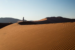 Tourist holding smart phone and taking photo at scenic sand dunes at Sossusvlei, Namib desert, Namib Naukluft National Park, Namib. Ia. Adventure and exploration Stock Image