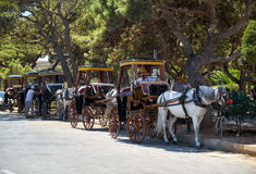 Tourist horse carriage in front of the main gate to Mdina, Malta. MDINA, MALTA - JULY 29, 2015:  Tourist horse carriage waiting for the tourists in front of the Stock Photography