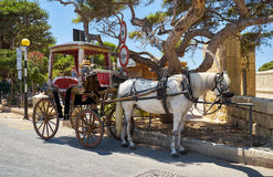 Tourist horse carriage in front of the main gate to Mdina, Malta. MDINA, MALTA - JULY 29, 2015:  Tourist horse carriage waiting for the tourists in front of the Royalty Free Stock Image