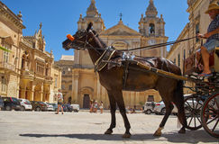 Tourist horse carriage on the St Paul`s Square, Mdina, Malta. MDINA, MALTA - JULY 29, 2015: The Tourist horse carriage on the St Paul`s Square in front of St Stock Photography