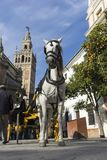 Beautiful cities of Spain to travel, Seville in the Andalusia region. Tourist horse next to the giralda royalty free stock image