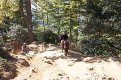 Tourist Is Going To The Tiger S Nest, Paro, Bhutan Royalty Free Stock Photo