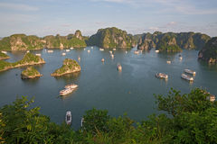 Tourist Junks in Halong Bay, Vietnam Royalty Free Stock Images
