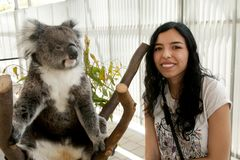 Tourist with Koala royalty free stock photo