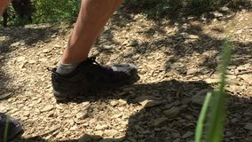 Tourist legs stepping on forest path while hiking in mountain. Hiker walking on dirt road while climbing on highlands stock footage