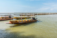 Tourist long-tailed boats give a service for tourists with the opportunity to see the coast of Don Hoi Lot. It is in Samut Songkhram Province, Thailand Royalty Free Stock Image