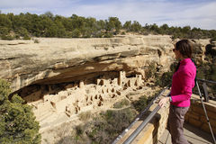 Tourist looking at Cliff Palace, Mesa Verde National Park, Color Royalty Free Stock Images