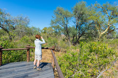 Tourist looking at panorama with binocular from viewpoint over the Olifants river, scenic and colorful landscape with wildlife in Stock Photography