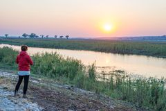 Tourist looking at sunrise over Chobe River, Namibia Botswana Africa. Natural colors, rear view. Tourist looking at sunrise over Chobe River, Namibia Botswana Royalty Free Stock Photo