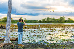 Tourist looks the Pantanal area. Pantanal is one of the world's largest tropical wetland areas located in Brazil , South America Royalty Free Stock Images