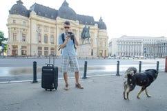 Tourist macht Foto zu einem streunenden Hund Lizenzfreies Stockfoto