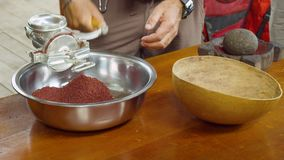 Tourist Grinding Roasted Cocoa Beans. Tourist Manually Grinding Roasted Cocoa Beans Ecuador stock video footage